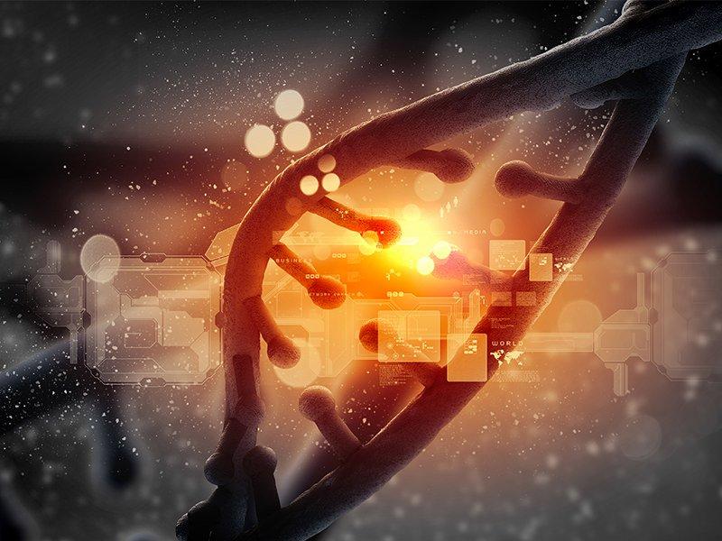 Cell repair dna pbm therapy photobiomodulation novothor
