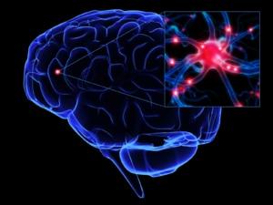 Brain PBM
